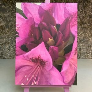 Rhododendron Flower Canvas Print 9 x 12